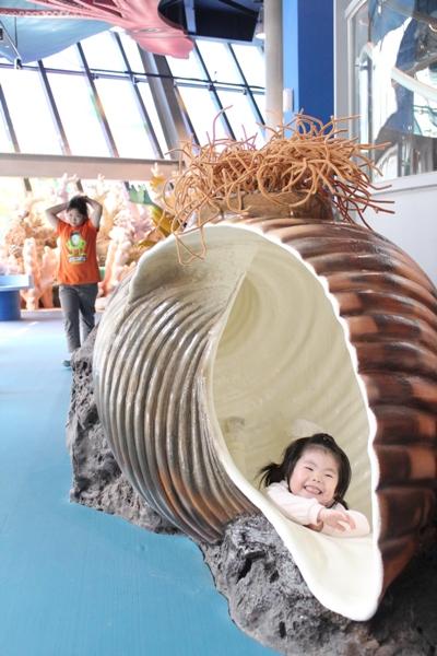 孩童扮演寄居蟹