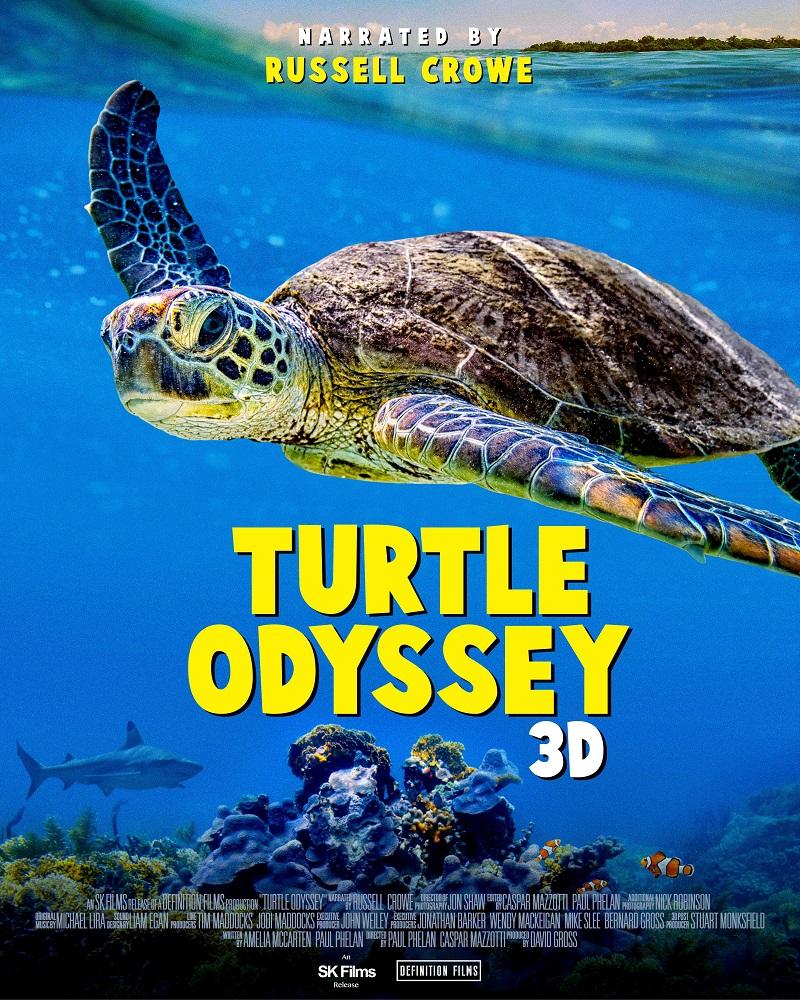 海龜的奇幻旅程