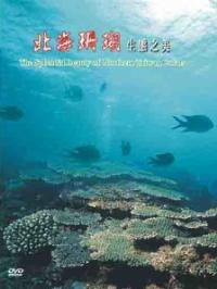 北海之珊瑚(已絕版,合併於舞動北海生命增訂版)/