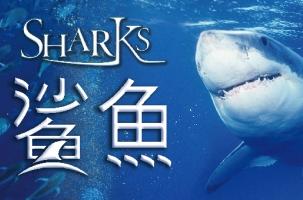 IMAX 3D 影片介紹