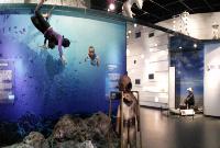 海洋文化廳-海風下的容顏