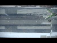 開新視窗,浮力與重力的交響曲-水下滑翔機