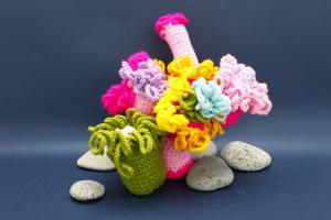 五彩繽紛的針織珊瑚