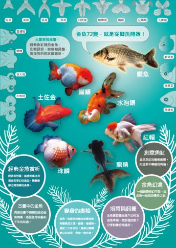 金玉滿堂-迎春金魚特展