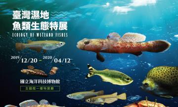108/12/20-109/04/12臺灣濕地魚類生態特展