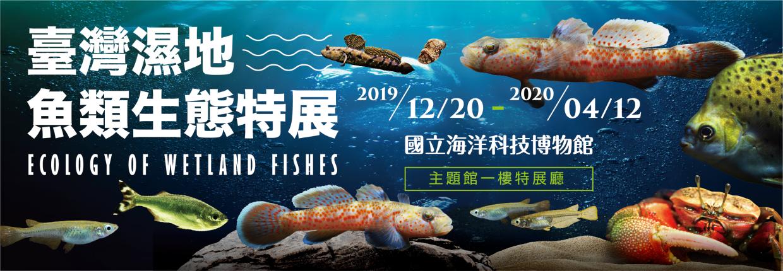 臺灣濕地魚類生態特展