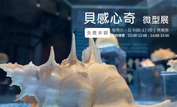 110/3/19-110/12/31貝感心奇貝殼微型展