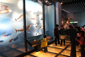open new window,Our dimensional spaces also allow you to learn more about environmental